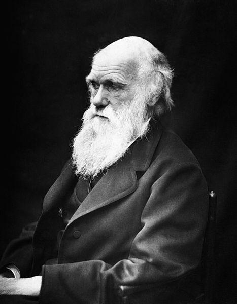 467px-Charles_Darwin_01